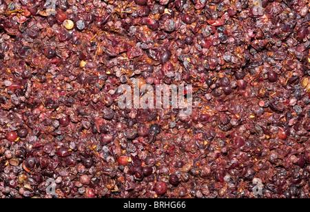Organic Liatiko grapes crushed for wine making Crete Greece - Stock Image