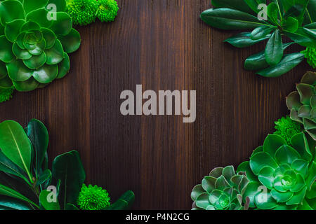 Botanical Frame with Succulents, Foliage and Flowers with Space for Copy - Stock Image