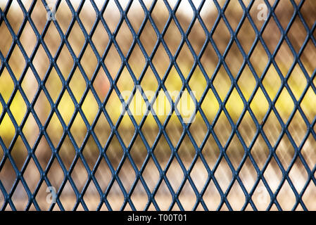 Steel wire mesh fence abstract rhythmic background texture for design - Stock Image