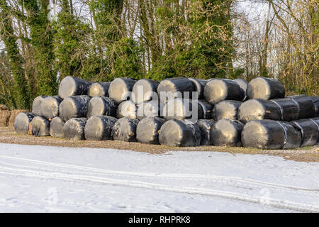 Stacked hay bales during winter covered in black plastic for protection - Stock Image