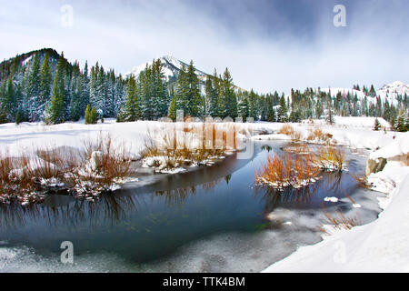 Scenic view of frozen lake by trees against cloudy sky - Stock Image