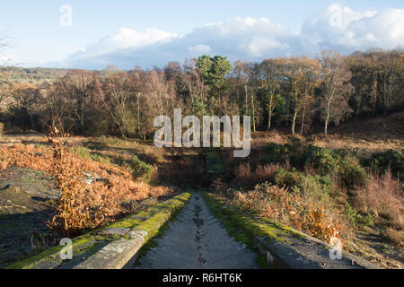 Historic tank testing ramp in countryside at Hazeley Heath in Hampshire, UK. Concrete military or army remains. - Stock Image