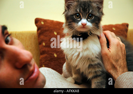 friend cat and man - Stock Image