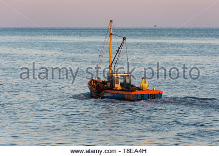 Morecambe, Lancashire, UK, 13 May 2019, UK Weather. One of the last shrimpers operating out of Morecambe heads out to the shrimping grounds, lit by the early morning sunshine. After a cold night, unbroken sunshine is forecast  for the start of the working week and temperatures in the low 70s Fahrenheit may be reached in North West England by the middle of the week. Credit: Keith Douglas News/Alamy Live News - Stock Image