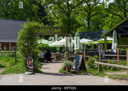 The Forest Café, a rustic café serving a variety of food, situated in the local beauty spot of Salcey Forest, Northamptonshire, UK - Stock Image