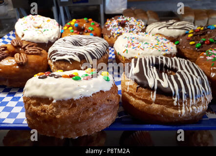 Beautifully decorated and iced fresh baked donuts - Stock Image