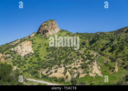 Brown rock formations emerge from the green grass of a California canyon. - Stock Image