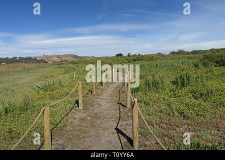 trail through scrubland  Laguna El Peral Nature Reserve, Chile             January - Stock Image