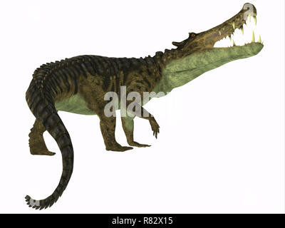 Kaprosuchus Reptile Tail - Kaprosuchus was a carnivorous crocodile that lived in Niger, Africa during the Cretaceous Period. - Stock Image