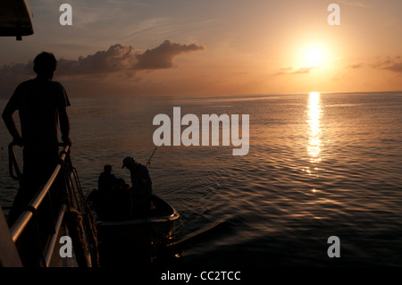 A small fishing boat returns back to the mother ship at the end of a day of fishing on the Great Barrier Reef, Queensland, - Stock Image