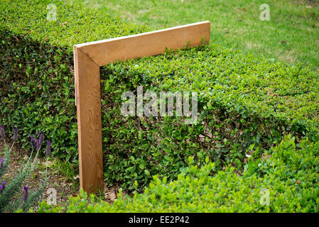 A right-angled measure used to check hedge height on a hedge in the Vergelegen wine estate in the Western Cape, - Stock Image