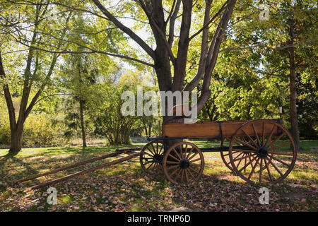 Antique wagon in the front yard in autumn - Stock Image