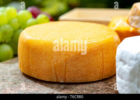 French cheeses collection, yellow  Le peche des bons peres cheese served with grapes on marble plate outdoor in green garden - Stock Image