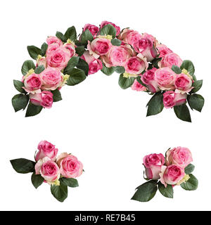 Beautiful pink and white rose flowers with leaves arranged and isolated over a white background. Image shot from top view. - Stock Image