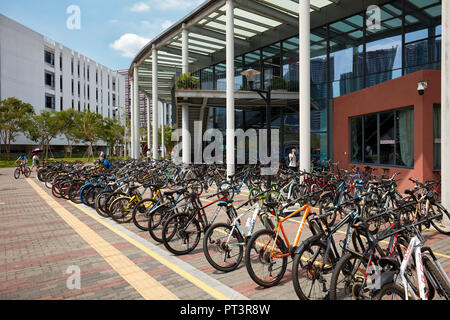 Parking for bicycles on the campus of Southern University of Science and Technology (SUSTech). Shenzhen, Guangdong Province, China. - Stock Image
