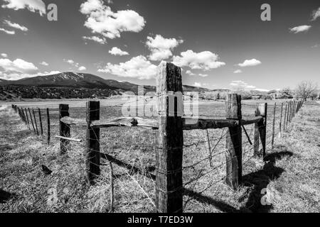 Black & white of barbed wire and wooden fence posts border ranch pasture; Vandaveer Ranch; Salida; Colorado; USA - Stock Image