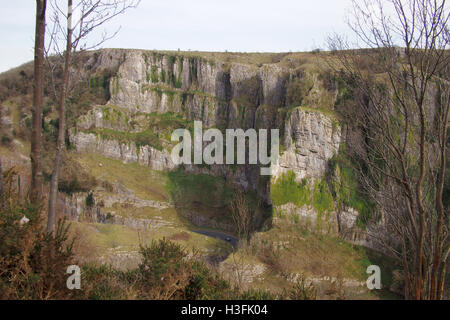 Cheddar Gorge in Somerset, England UK - Stock Image