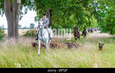 Cranwell, Lincoln, Lincolnshire, UK.  6th August 2017.  The Cranwell Bloodhounds first ride out and hound exercise of the season attracted over fifty supports and followers, the majority riding on a Sunday summer's afternoon.  The Hunt Master Mr Phil Broughton MH can be seen leading the hounds.  Credit:  Matt Limb OBE/Alamy Live News - Stock Image