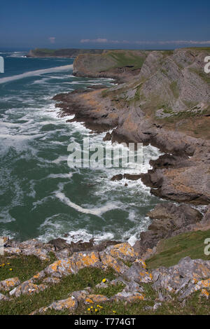 Red Chamber cliffs, Thurba, Gower Peninsula, South Wales - Stock Image