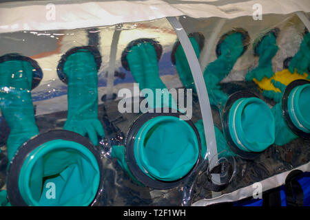 Close up of glove box to contain biological hazards - Stock Image