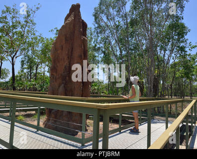 Tourist looks at Giant mound made by cathedral termites in the Litchfield National Park, Northern Territory, Australia - Stock Image