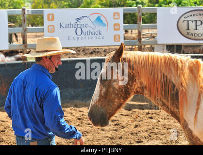 Tom Curtain the singing cowboy horse whispering  in his Outback Experience show in Katherine, Northern Territory, Australia - Stock Image