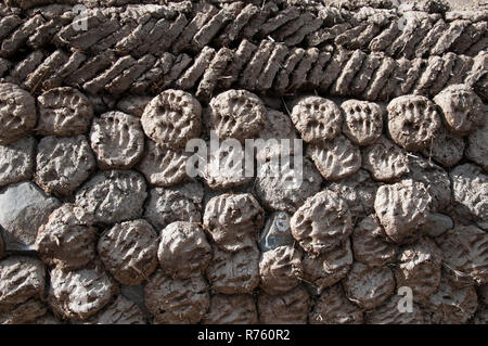 Yak dung patties stacked in readiness for use as fuel in a rural village, Tibet, China - Stock Image