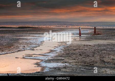 Landscape of water  trailing to Lake Magadi, Morning. - Stock Image