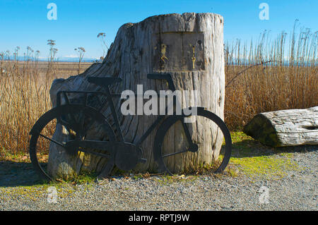 A bicycle replica leaning against a weathered stump found along the Boundary Bay Dyke Trail in Tsawwassen, British Columbia, Canada. - Stock Image