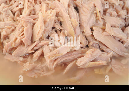 tuna fish canned background - Stock Image