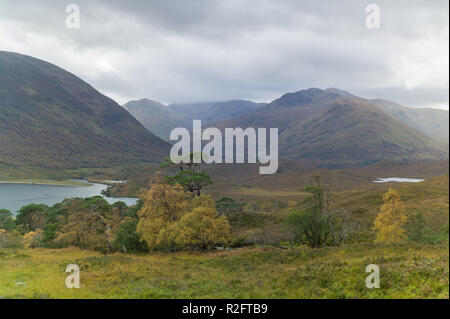 Loch Affric in Glen Affric with caledonian pines and mountains behind - Stock Image