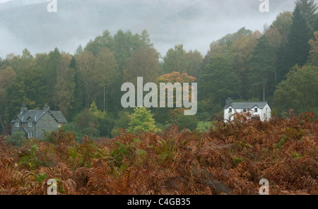 Two houses on the edge of Elterwater Common in Autumn mist - Stock Image