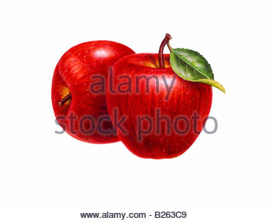 Apples Two - Stock Image