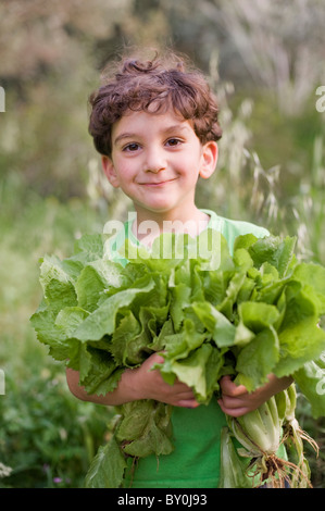 boy holding organic lettuce outdoors - Stock Image