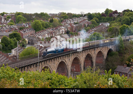 EX LNER streamlined A4 pacific steam locomotive 60007 Sir Nigel Gresley heads south over Durham city viaduct, May 2009, England UK - Stock Image