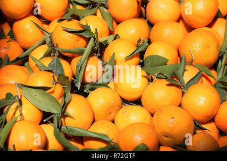 Oranges for sale at a market stall souk in Morocco - Stock Image