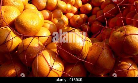 Oranges in webbing - Stock Image