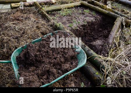Compost heaps of poultry manure and straw, Wales, UK - Stock Image