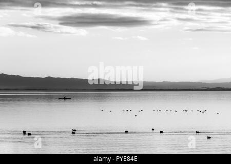 Beautiful view of Trasimeno lake at sunset with birds on water, a man on a canoe and hills on the background - Stock Image