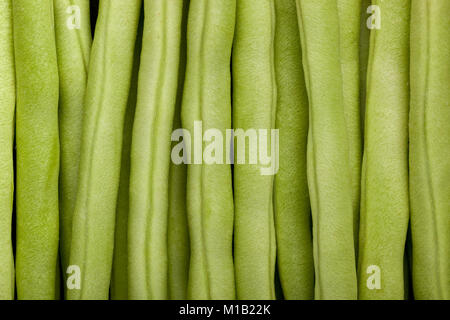 Closeup of the mid section of a pile of french beans - Stock Image