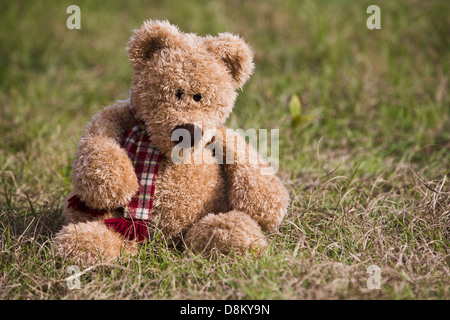 Toy teddy bear with a scarf sitting on a grass - Stock Image