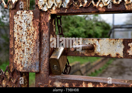Padlock on rusty outdoor steel security gate with sliding bolt - Stock Image