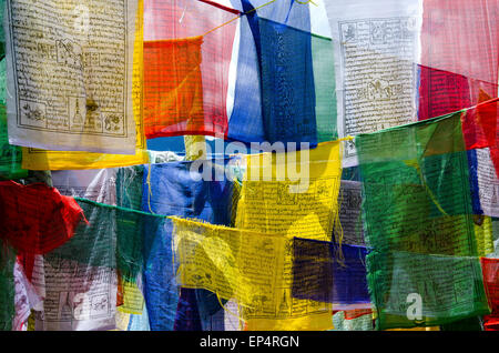 Colorful, buddhist prayer flags near Tiger's Nest in Bhutan - Stock Image