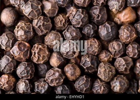 Whole black pepper full frame. - Stock Image