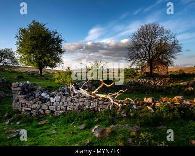 Homestead ruins at Blaen-Hepste beside the river Hepste, near Penderyn, Brecon Beacons, Wales, UK - Stock Image