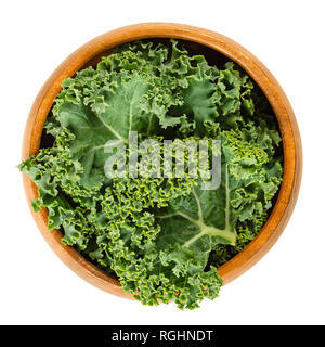 Fresh curly kale leaves in wooden bowl. Also called Scots kale, a leaf cabbage, Brassica oleracea. Edible green and healthy vegetable. - Stock Image
