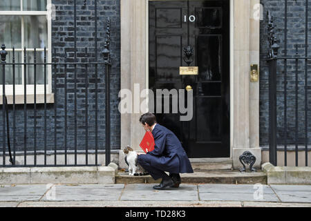 Secretary of State for International Development Rory Stewart arrives for a cabinet meeting at 10 Downing Street, London. - Stock Image