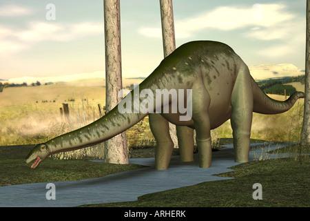 dinosaur Apatosaurus - Stock Image