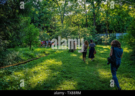 Italy Piedmont Turin Valentino botanical garden -  Tree Grove - Visit with guide - Stock Image