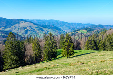 Mountainous landscape in the Upper Münster valley in early spring, Breisgau-Hochschwarzwald, Baden-Württemberg, Germany. - Stock Image